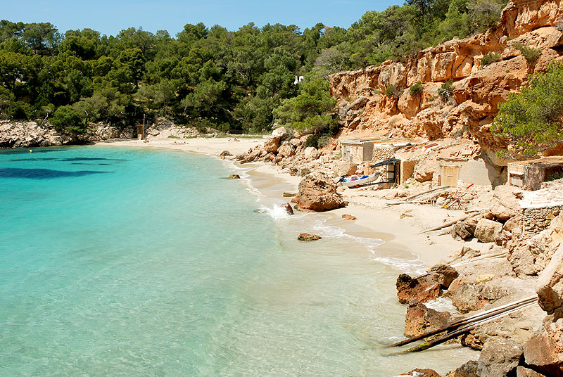 Image result for cala saladeta
